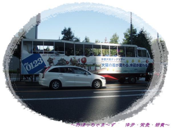 PA200434-1.jpg