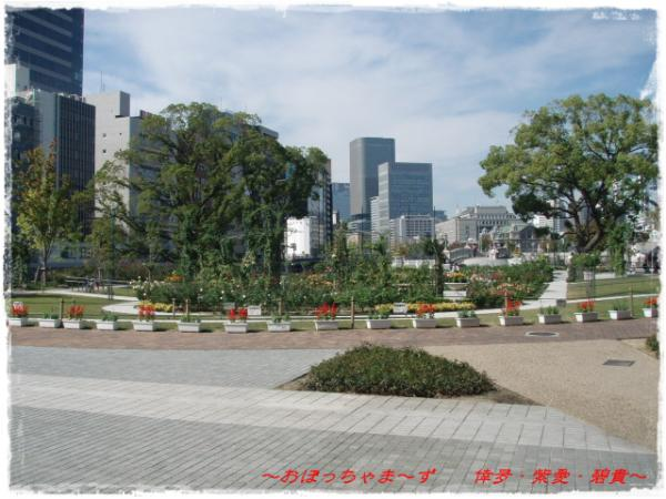 PA270338-1.jpg