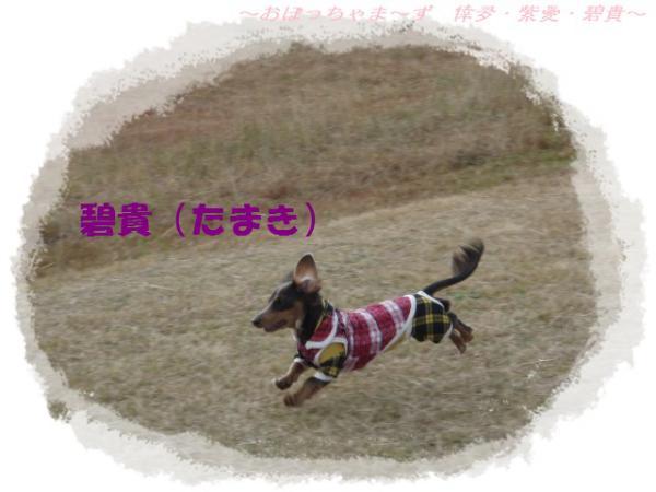 PC010102-1.jpg