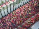 水路の紅葉
