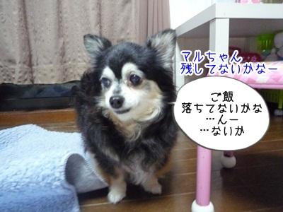 くるみP1300474