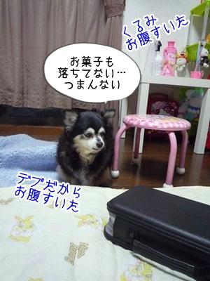 くるみP1300475