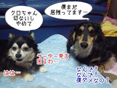 くるみP1300526