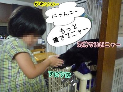 無糖さんP1320059