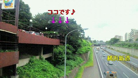 NEC_0021_20120605211816.jpg