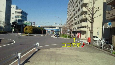 NEC_0042_20120322235630.jpg