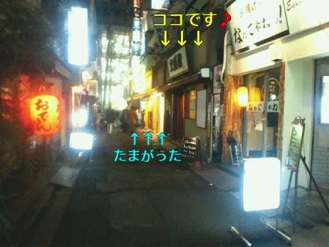 NEC_0993_20120226234555.jpg