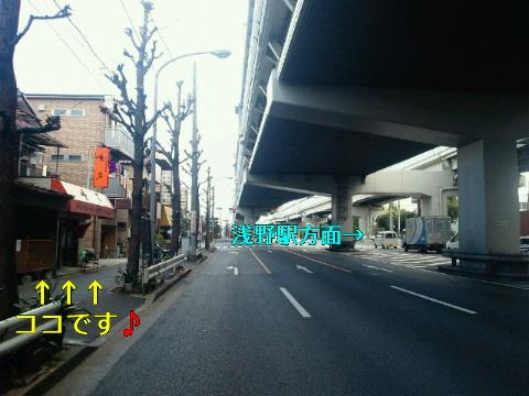 NEC_0995_20120227211109.jpg