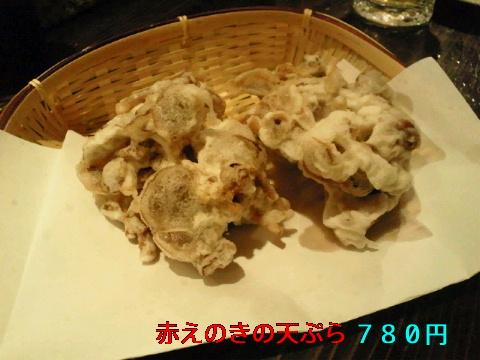 NEC_1235.jpg