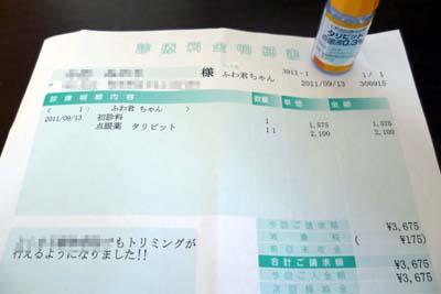 20110913:病院明細書