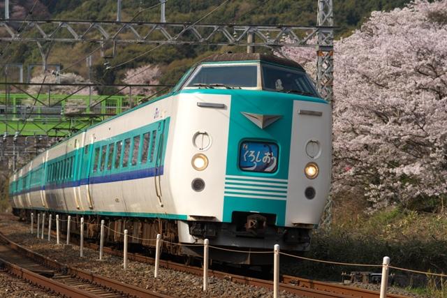 110411-JR-W-381-kuroshio-sakura-1.jpg