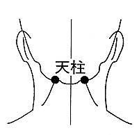 筋肉のこりからくる頭痛に効果があります。