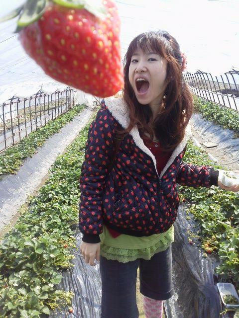苺尽くし2012-7