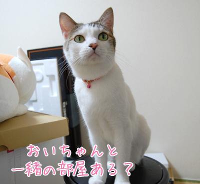 101021_引っ越し前日02