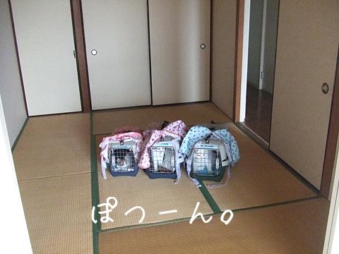 101022_引っ越し02