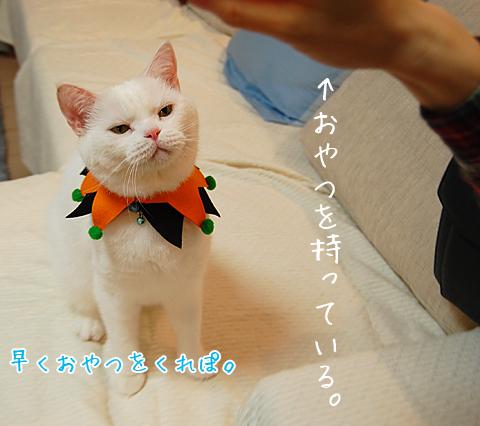 101022_撮影01
