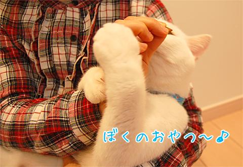 101022_撮影04