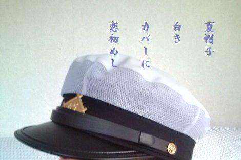 なつ帽子3白きカバーに
