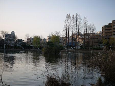 20101226-15.jpg