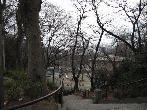 20110206-03.jpg