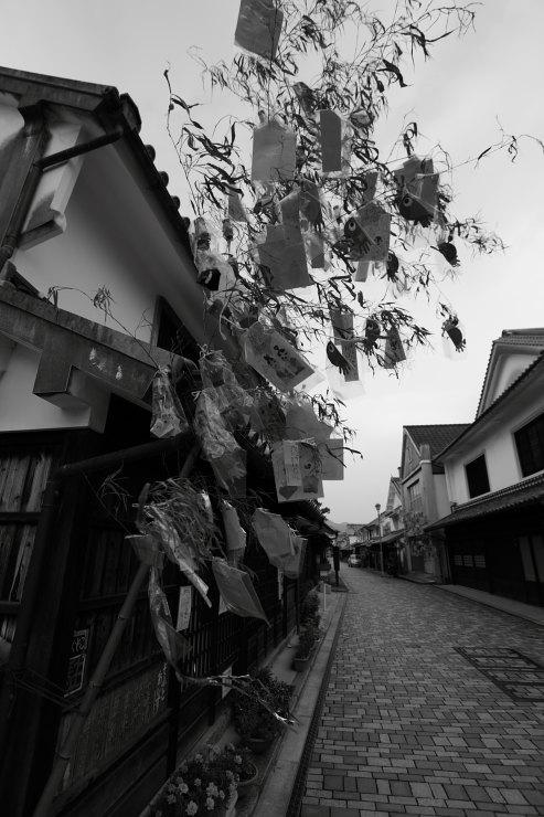 七夕の笹飾り
