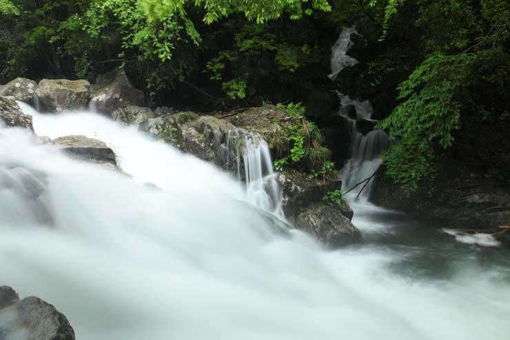 梅雨の木谷峡Ⅲ