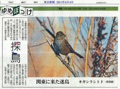 h23-2-4-tokyo-shimbun-800-2.jpg