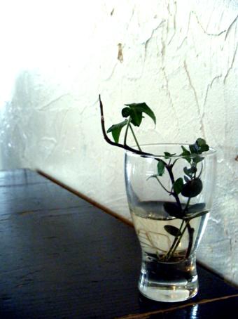 『mois cafe(モワ カフェ)』のチョコミルク