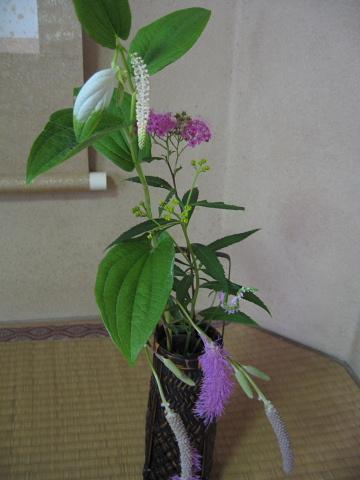 7,8お花