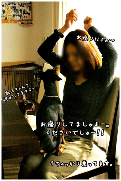 DSC02460-0-007.jpg