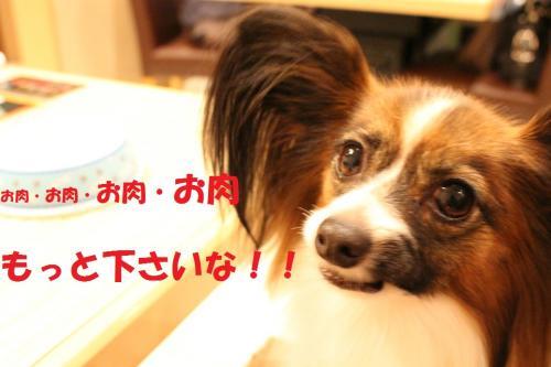 IMG_0241・茨シ雲convert_20141023062544