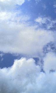 image/2009-10-13T08:04:111