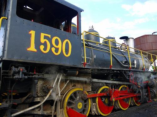 P10701571 (5)