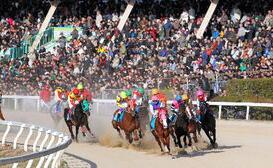 2012-荒尾競馬