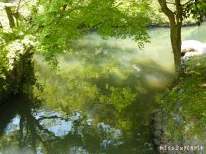 近水園11