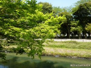近水園10
