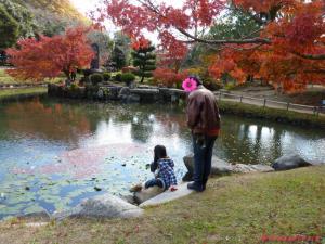 近水園秋8