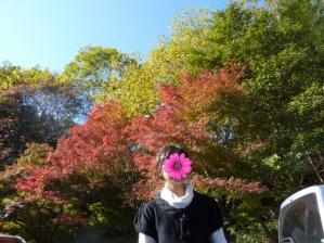 2011.11.12紅葉14