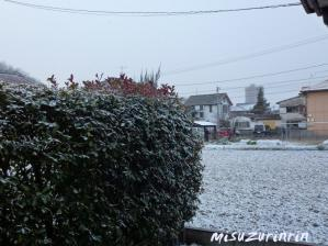雪降った20