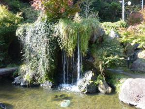 2011.11.12紅葉2