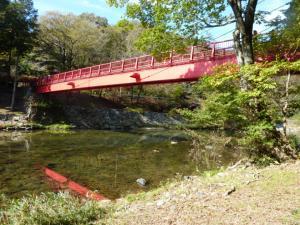 2011.11.12紅葉5