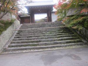 京都11月3