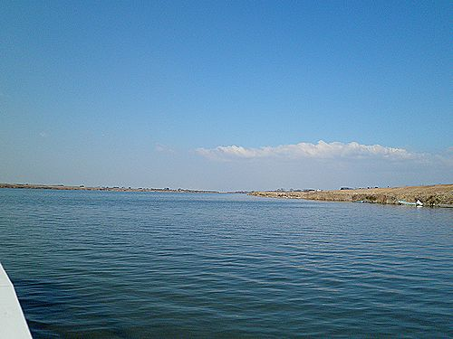 利根川・赤岩渡船から