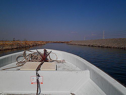 島村渡船5