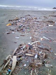 海岸ゴミ・・・。
