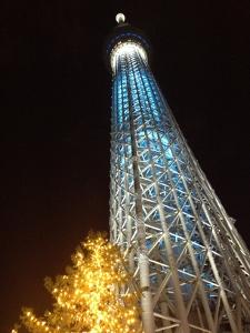 東京スカイツリー (225x300)