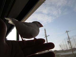 till_blog2010dec007.jpg