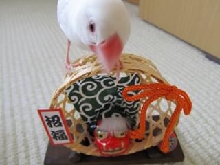 till_blog2010dec010.jpg