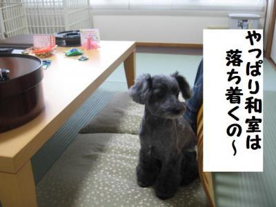 和室はいいね~!