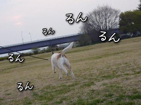 hana_230411_2.jpg